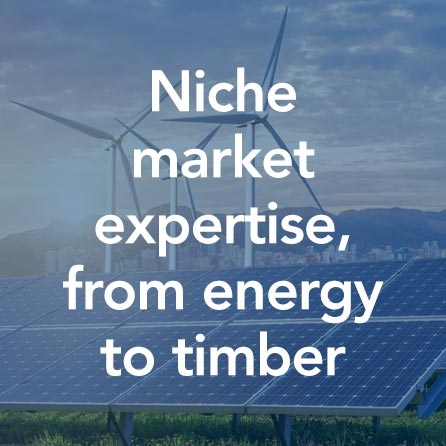 Niche market expertise, from energy to timber